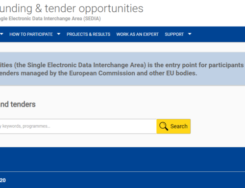 First Steps on the Funding and Tender Opportunities Portal