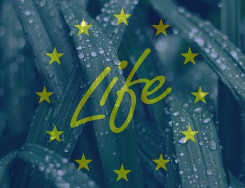 New LIFE Programme 2021-2027